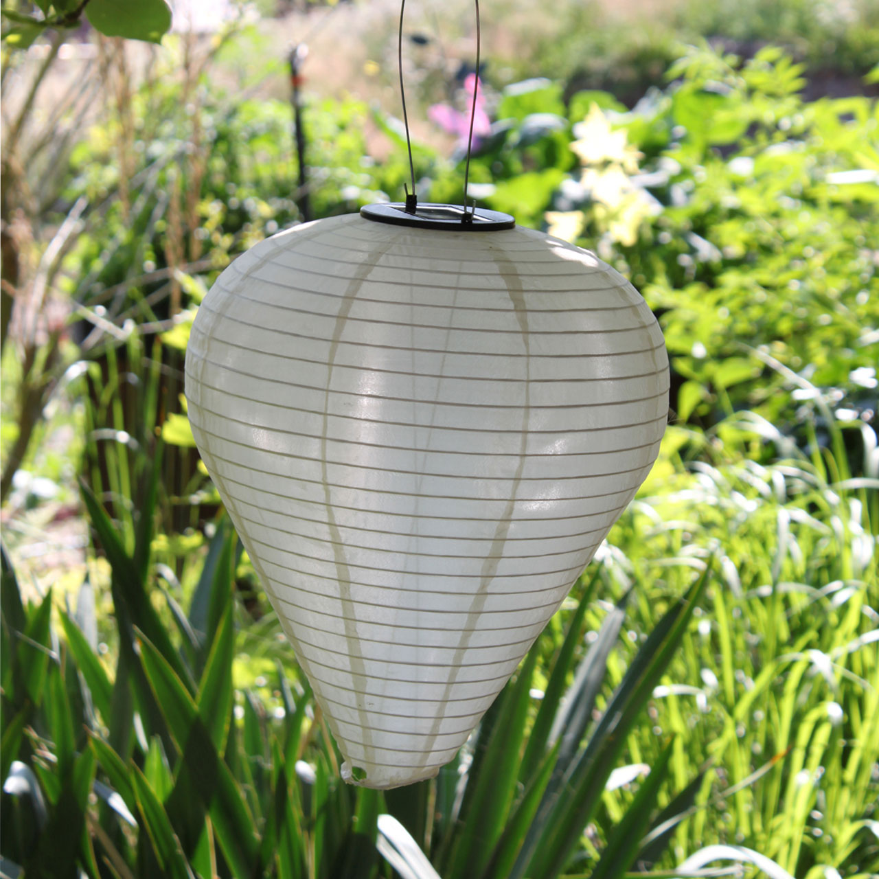 solar led laterne wetterfest ballon sandhell. Black Bedroom Furniture Sets. Home Design Ideas