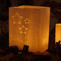 Lichtertüten Stern Länge: 7,5, Breite: 7,5, Höhe: 9,5cm
